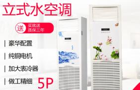 豪华柜式水空调